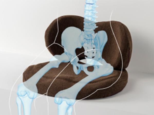 骨盤サポート構造。