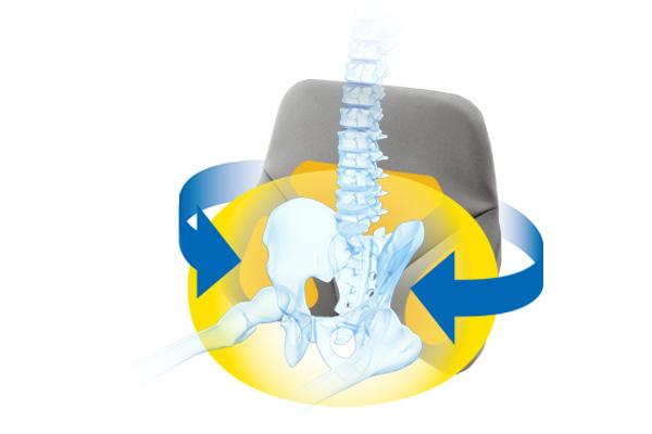 骨盤サポート構造で<br /> 腰の負担を軽減。